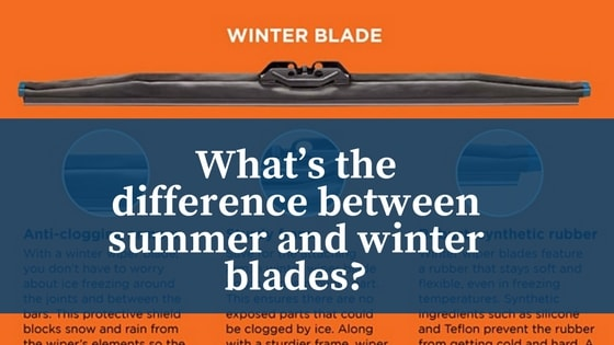 differences between summer and winter The world's largest seasonal event is the change from summer to winter ice in  antarctica the ice undergoes a change in area from 3 million square kilometres  to.